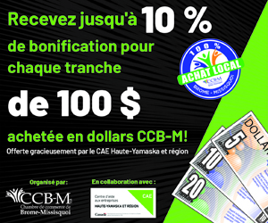 Promotion Dollars CCB-M 2020- 250 x 300
