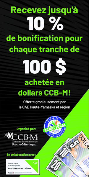 Promotion Dollars CCB-M 2020- 300 x 600